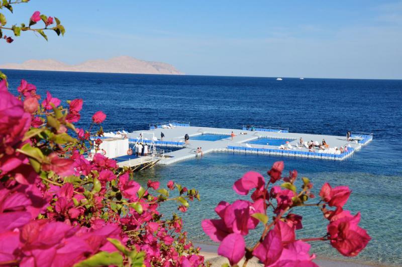 Capodanno 2019 A Sharm El…