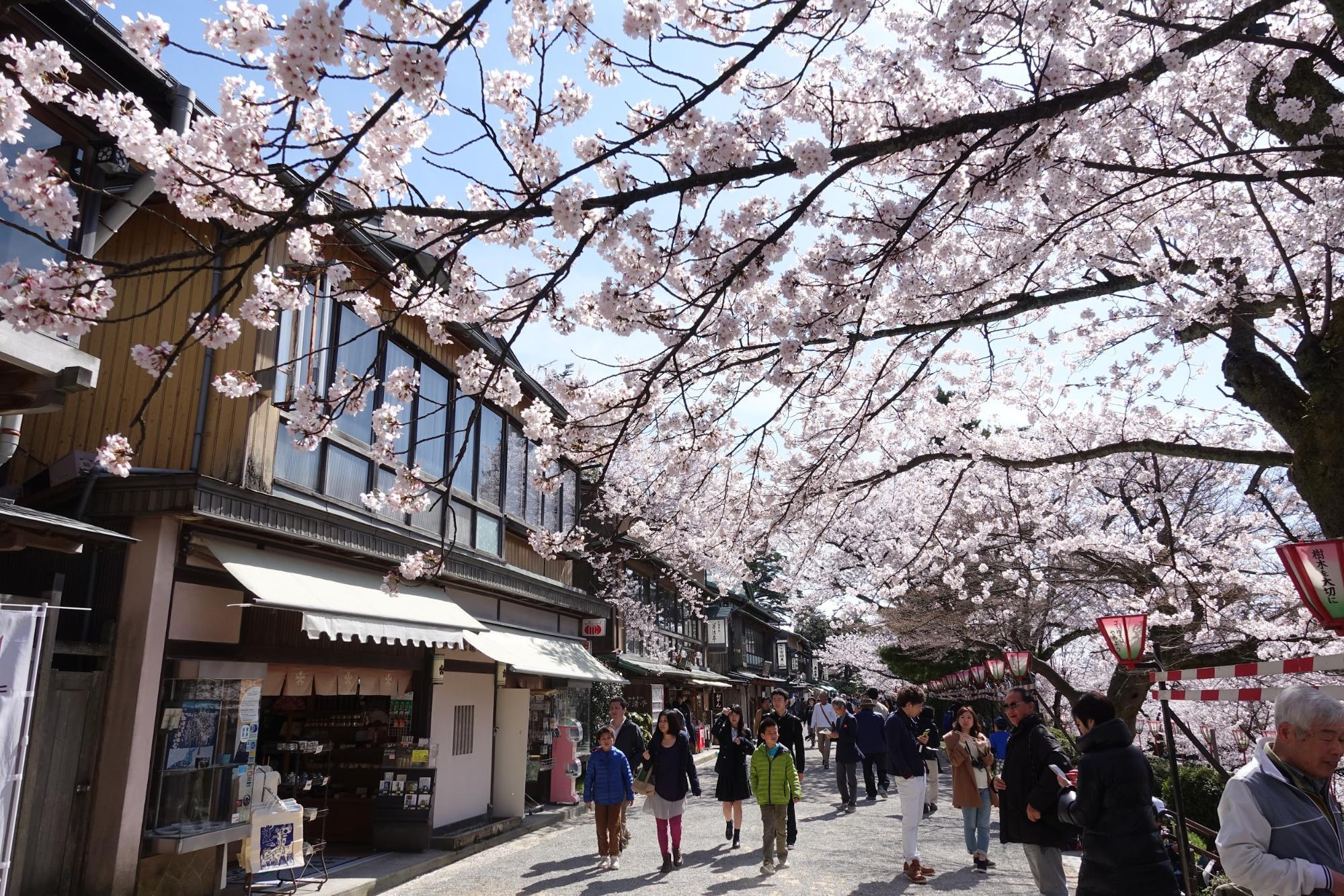 Giappocrociera Tour Giappone + MSC Crociera 7 Notti Partenza 14 Settembre Cabina Interna cat. Bella