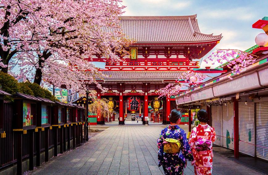 Giappocrociera Tour Giappone + MSC Crociera 7 Notti Partenza 14 Settembre Cabina con Balcone cat. Fantastica