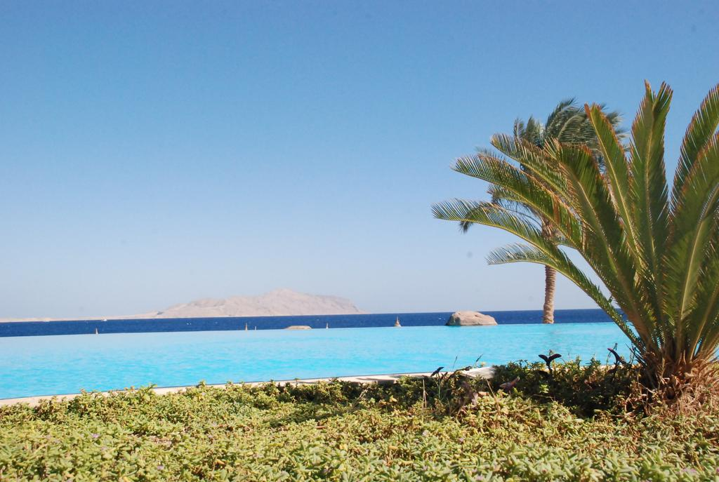 Sharm El Sheikh Albatros Cyrene Grand Hotel 7 Notti + Volo All Inclusive Partenze da 8 Aprile