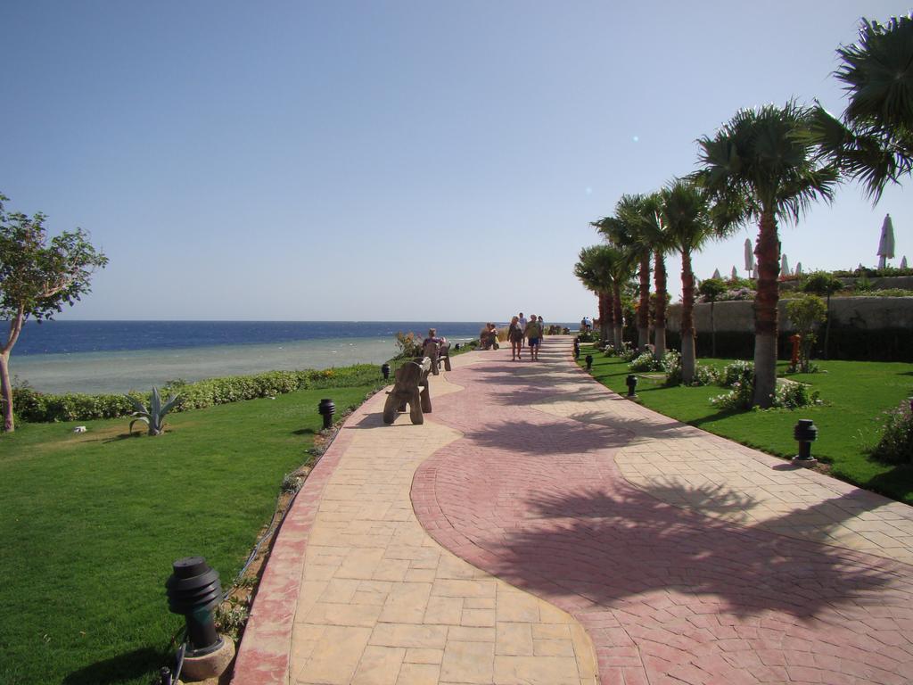 Sharm El Sheikh Albatros Cyrene Grand Hotel 7 Notti + Volo All Inclusive Partenze da 13 Aprile