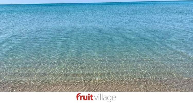Settimana a Paestum Coral Beach con Bonus Vacanza