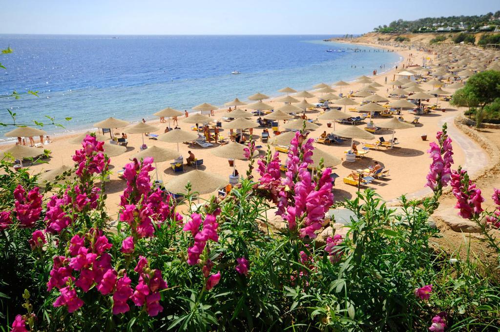 Natale a Sharm El Sheikh 5 Notti dal 22 Dicembre Domina Aquamarine Hotel & Resort